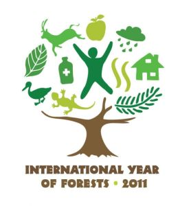 inter forest 2011 300
