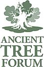 ancient-tree-forum. JPG. red
